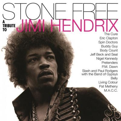 Różni wykonawcy - Stone Free (Jimi Hendrix Tribute) Płyta winylowa (2LP, 180g) Polska Gwarancja